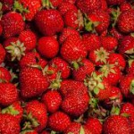 Strawberries-15-foods-not-to-refrigerate