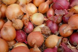 White-purple onion-vegetable-garden