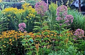 Garden plant design-chemical-application
