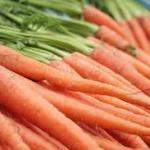 Carrots-planting-a-spring-garden