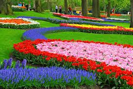rain bow garden