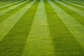 When Is The Best Time To fertilize Your Lawn-a-beautiful-maintained-lawn