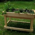Raised bed-wooden box with plants-raised-bed-gardening-ideas