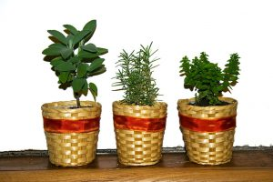Herb Garden Design Ideas-herbs-growing-in-decortative-baskets