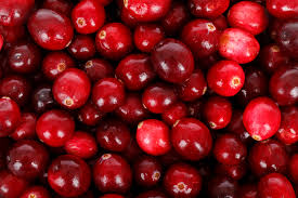 Cranberries-fighting-infections-with-cranberries