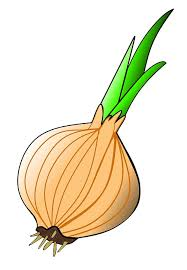 Cartoon onion-garlic-natural-medicine