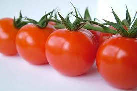 Red tomatoes-tomatoes
