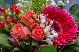 Flower arrangement-top-10-cut-flowers