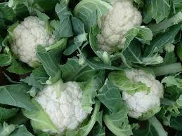 Cauliflower vegetable-cauliflower-health-benefits