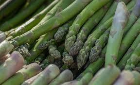 Asparagus-growing asparagus