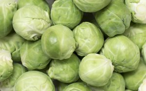 growing brussel sprouts-green brussel sprouts