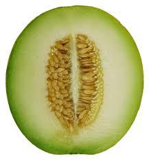 Honeydew melon fruit-Health benefits of honeydew melon