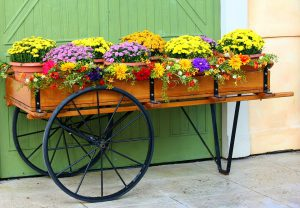 Garden Focal Point Images-a-wagon-with-flowers