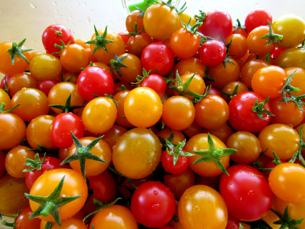 Tomatoes-how-to-grow-tomatoes-in-containers