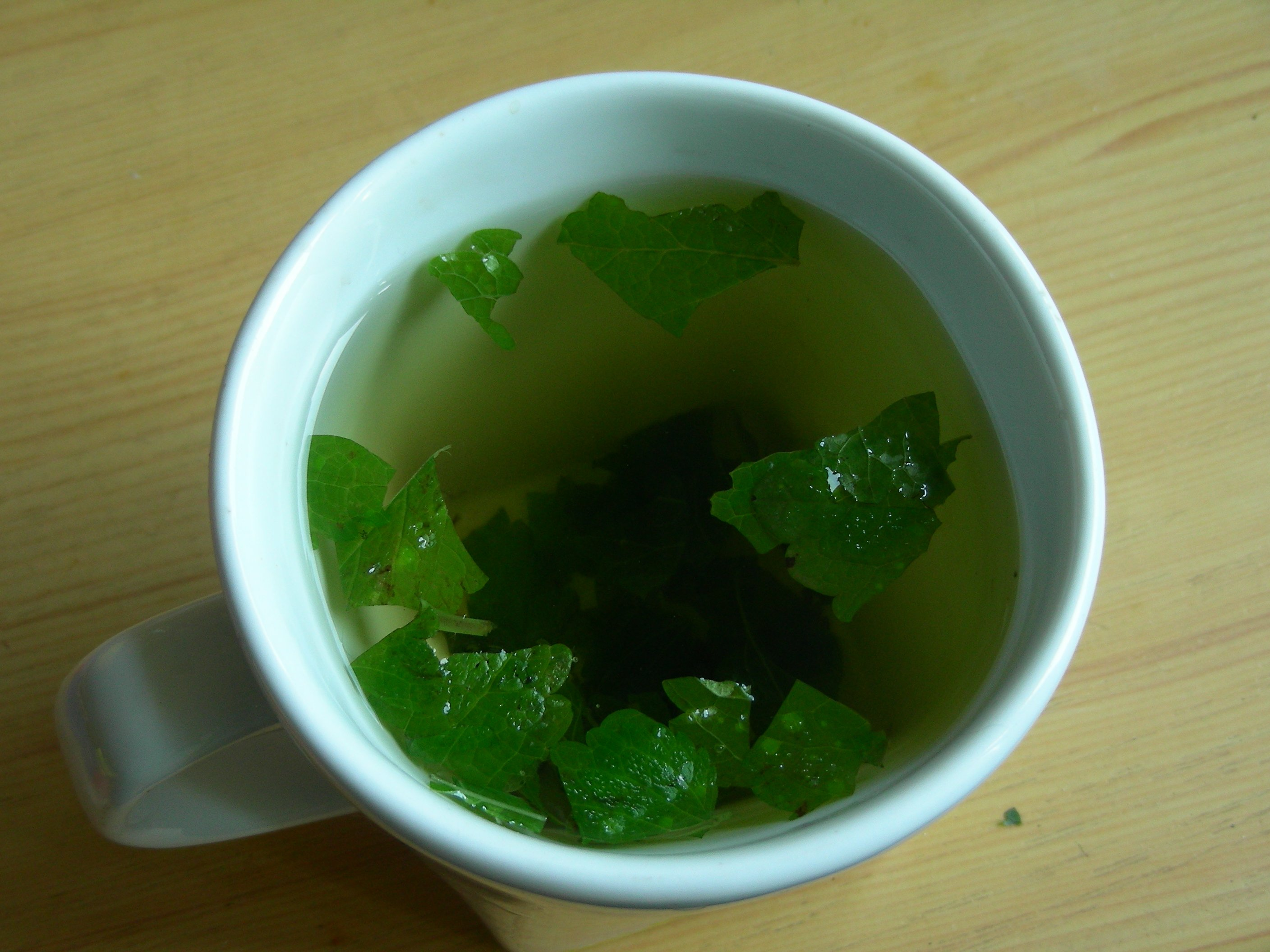 Lemon balm tea-lemon-balm-tea-benefits