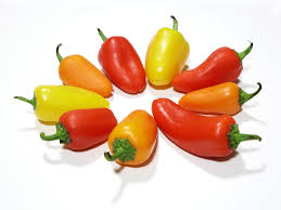 Chilli peppers-how-to-grow-chilli-peppers