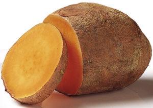 lice sweet potato-How- to- grow- sweet potato- in- the- home- garden