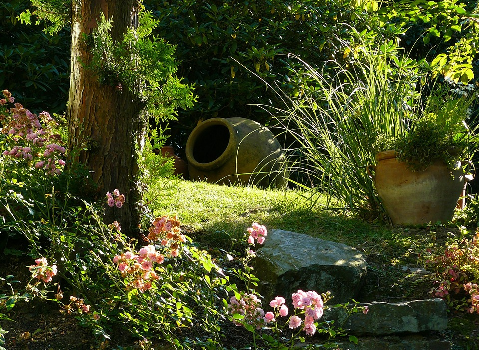 Rain Garden-creating-a-rain-garden