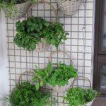 Hanging Baskets-constructing-a-vertical-garden