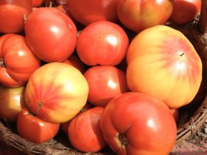 Heirloom Tomatoes-heirloom-tomatoes