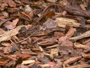 Winter Mulching Tips-bark-mulch