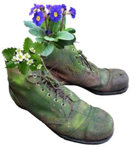 Flowering Plants In Boots-garden-ideas-recycled-material