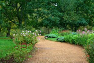 Gravel walking path-how-to-create-a gravel-garden