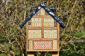 Insect Hotel-how-to-make-an-insect- hotel