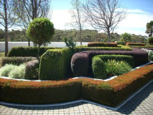Common Landscaping Mistake-topiary-garden-hedge