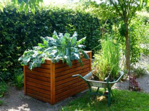 Raise Bed Garden-small-garden-designs-and-layouts