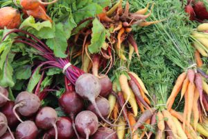How To Create And Organic Garden-beets-carrots