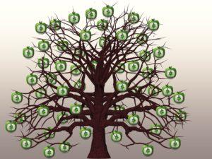 How To Make Money Gardening-money-tree